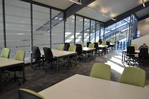 Study Area (resized)