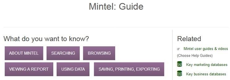 Mintel guide